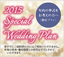 2015 Special Wedding Plan